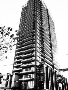 Paintbox Condo Olympus Digital Camera, Skyscraper, Toronto, The Neighbourhood, Condo, Multi Story Building, Real Estate, Park, Skyscrapers
