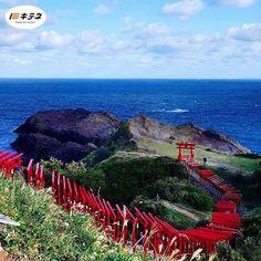 Repost a new photo taken by kitene.local! おめでとうございます本当に何コレですね是非一度行ってみたいです  撮影者: @lumikkuma 撮影場所: 山口県 長門市 元乃隅稲成神社  #山口県 #kitene #lovers_nippon #ig_japan #gf_japan #icu_japan #team_jp_ #bns_japan #jp_views #jp_views2nd #photolabo_jp #jp_gallery #ig_nippon #ig_nihon #igersjp #igersjapan #wow_nihon #写真撮ってる人と繋がりたい #写真好きな人と繋がりたい #ファインダー越しの私の世界 #ファインダーは私のキャンパス #写真 http://ift.tt/1KjsVCq #searchinstagram #instagramsearch http://goo.gl/bH29do - http://ift.tt/1Myc4xw