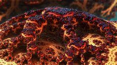 Plague-Stricken by Swoopswatkill.deviantart.com on @DeviantArt