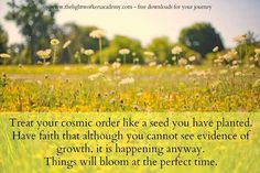 Plant good seeds and tend them well. Have faith that everything is unfolding as it should.  Rev. Sandra Rodgers