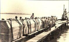 Pianos Essenfelder, feitos no Paraná, prontos para serem exportados (Crédito: Reprodução/Valterci Santos)