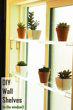 """Have you ever thought to yourself, """"It would be nice if I could hang a shelf or two in the window. All that natural light!"""" Or: """"I need more acrylic in my life. Shelves? Could I make acrylic shelves?"""" Here's some good news: You can DIY wall shelves, made out of acrylic, and hang them on the wall OR in the window."""
