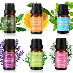 6 Pack Pure Essential Oils for Aromatherapy Set