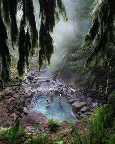 TERWILLIGER (COUGAR) HOT SPRINGS Located deep beneath the canopy of a primeval forest, Cougar Hot Springs features a chain of jewel colored pools fed by a small cave in a wooded ravine. Easily the most picturesque hot springs I've ever been to... Pro Tip: Due to the Terwilliger Fire Cougar Hot Springs is currently closed. The state of the hot springs and any plans for reopening are unknown.