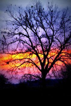 Sunrise on Route 66 in Oklahoma.  Photo by Melanie Anne Baumgardner