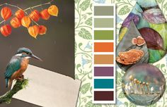 Fall color palette, fall winter 2014 color trends.