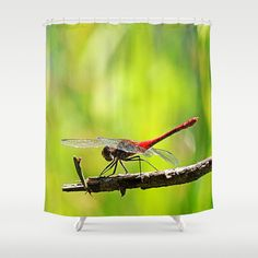 MM - RED DRAGON FLY Shower Curtain Dragon fly sitting on a twig  nature, flora, fauna, insect, animal, summer, green