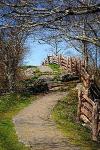 paths, country and fences. Country Fences, Country Roads, Beautiful World, Beautiful Places, Old Fences, Backyard Fences, Pool Fence, Garden Fencing, Country Life
