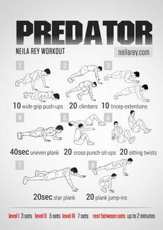 Nerd Workout - Predator