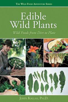 Edible Wild Plants | #foraging