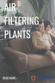 """Did you know that certain indoor plants can help purify your indoor air? That's right! Here's our guide to indoor plants you should have in your home.  There are many plants that can help """"clean"""" your indoor air, BUT if they are not properly taken care of, they could actually make your Indoor Air Quality (IAQ) worse. But that's not all, it's also important to be aware of the dangers the plants you have in your home especially if they are ingested by curious pets or children. Air Filtering Plants, Aston Martin Vulcan, Indoor Air Quality, Indoor Plants, Did You Know, Super Cars, Knowing You, Pets, Children"""