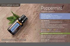 doTerra Power Point Image - Single Oil - Peppermint