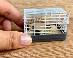 doll house A miniature hamster with a cage. A hamster for a Dollhouse on a scale., As well as for Barbie dolls in scale. A hamster with a cage can be used as a decoration. Miniature Furniture, Doll Furniture, Dollhouse Furniture, Miniature Crafts, Miniature Dolls, Miniature Houses, Miniature Tutorials, Diy Dollhouse Miniatures, Accessoires Barbie