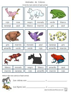 Printable Spanish FREEBIE of the Day: Colors in Spanish worksheet packet -- 18 pages from PrintableSpanish.com