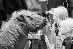 Les enfants apprennent la vie à la ferme #animaux #activités #enfants