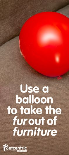This is need-to-pin info for all dog owners! Did you know you can use the static electricity from a blown up balloon to pick up pet hair from your couch? Go to Petcentric.com for even more ideas on how to get your dog's fur out of anything, from furniture to carpet to clothes. This is a helpful how-to resource for anyone with a shedding pet.
