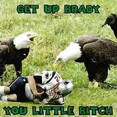 Football Tips Peyton Manning Funny Football Memes, Nfl Memes, Sports Memes, Football Humor, Sports App, Eagles Memes, Funny Memes, Philadelphia Eagles Super Bowl, Philadelphia Sports