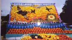 Pumpkin shop