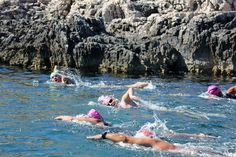 Open water swimming in action! - Open water swimming in action! Sprint Triathlon, Triathlon Training, Open Water Swimming, Keep Swimming, Swimming Motivation, Swimming Benefits, Croatian Islands, Water Safety, Adventure Holiday