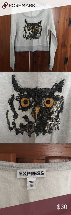 Express crop long sleeve owl tee Cropped sweater long sleeve with owl sequin and lace embellishment Express Tops