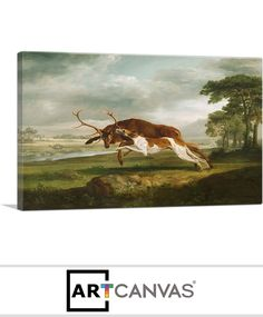 Ready-to-hang Hound Coursing a Stag 1763 Canvas Art Print for Sale canvas art print for sale. Epson Ink, Thing 1, Art Prints For Sale, Beautiful Textures, Custom Canvas, Hanging Art, Personal Photo, Canvas Frame, Canvas Art Prints