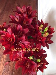 472 best Good Morning Gif photos by sonusunariya Good Morning Gif Images, Good Morning Beautiful Images, Good Morning Picture, Good Morning Messages, Morning Pictures, Beautiful Scenery, Beautiful Flowers, Morning Greetings Quotes, Good Morning Greetings