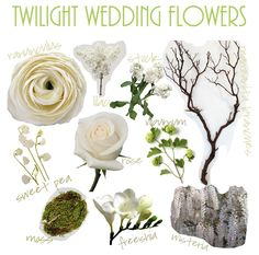 flores del sol: twilight wedding flowers - white rose, ranunculu, lilac, stock manzanita branches, sweet pea, viburnum, freeshia, moss, and wisteria