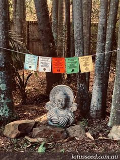 Lotus Seed prayer flags designed & printed in Australia to promote peace, compassion, spirituality & well-being. Get yours here: lotusseed.com.au Silent Prayer, God Prayer, Buddhist Prayer, Fifth Element, Prayer Flags, Flag Design, Linen Fabric, Compassion, Over The Years
