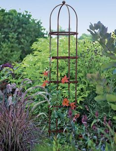 This freestanding garden trellis brings eye-catching height to your landscape to support flowering vines like clematis and climbing roses. Obelisk Trellis, Wall Trellis, Clematis Trellis, Rose Trellis, Clematis Plants, Potager Garden, Garden Trellis, Garden Escape, Petunias