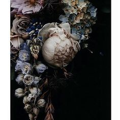 Floral photographic art by Runa + Holly – getinmyhome Photo art with flowers by Runa + Holly – getinmyhome Midnight Garden, Floral Prints, Art Prints, Floral Photography, Flower Wallpaper, Beautiful Images, Flower Art, Flower Arrangements, Beautiful Flowers