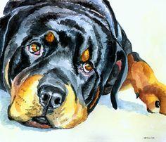 Rottweiler Painting  - Rottweiler Fine Art Print