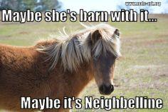 Maybe she's barn with it... Maybe it's neighbelline.  #horse #noahsark www.noahs-ark.org #LOL #Meme #Animal #Funny #humor