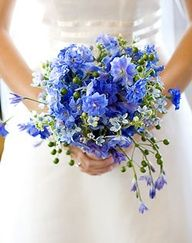 forget me not bouquet with pretty whispies
