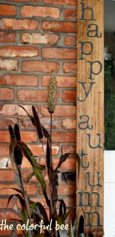 rustic outdoor christmas decorations - Google Search- have plenty of left over boards for this...