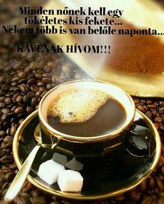Coffee Love, Stuffed Mushrooms, Wellness, Humor, Motivation, Pets, Tableware, Funny, Animals