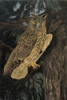 adolf_dietrich_owl_in_the_forest.jpg (559×836)