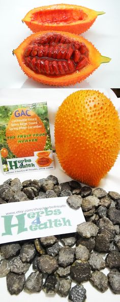 CLEARANCE SALE! Fresh 10 Organic RARE Exotic Gac Fruit Seeds, The Fruit from Heaven, High in Phytonutrients, Very Medicinal, Easy to Grow
