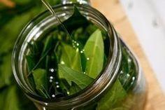 Comment faire de l'huile de laurier et profiter de ses bienfaits