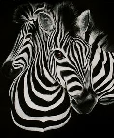 Zebra Print | And lastly, always consider adding the indomitable animal to your ...