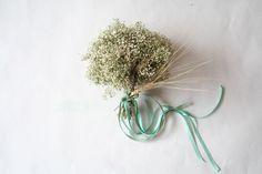 Paniculata o Gypsophila Gypsophila, Dandelion, Wedding Inspiration, Flowers, Plants, Bouquets, Wild Flowers, Floral Bouquets, Wedding Bouquets