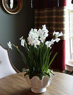 beautiful kitchen ideas - pretty table centerpiece idea.