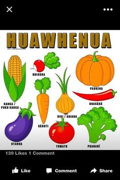 Owoce i warzywa Clip Art Collection Clipart pakietu Instant Fruit Clipart, Food Clipart, Fruits And Vegetables, Veggies, Maori Words, Vegetable Crafts, Vegetable Painting, Free Clipart Images, Cute Fruit