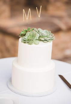Simple cake topped with succulents, modern gold topper // Randy + Ashley