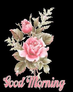 free Animated Rose wallpaper, resolution : 240 x 320 (ipod wallpaper). tags: animated, new, rose, . Roses Gif, Flowers Gif, Beautiful Rose Flowers, Good Morning Gift, Good Morning Picture, Good Morning Greetings, Morning Coffee, Good Morning Gif Images, Morning Pictures