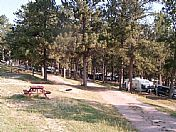 Welcome to Custer Crazy Horse Campground
