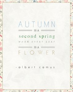 Autumn: Our Second Spring - Ruche