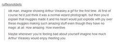 Imagine showing Arthur Weasley a gif for the first time. At first of course he'd just think it was a normal wizard photograph, but then you'd explain that muggles made it and his heart would just explode with joy over these muggles making such amazing stuff even though they have no magic at all. How amazing. How inventive.  Maybe whenever you're feeling bad about yourself imagine how much Arthur Weasley would enjoy meeting you.