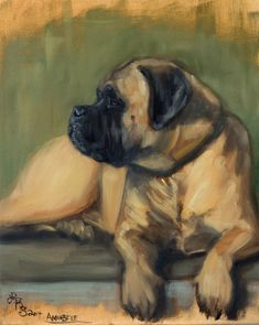 Equine, figurative and dog portraits by Maine artist, Lydia Rose Spencer. Equine paintings, canine paintings, figures and portrait commissions. Dog Paintings, Portrait Paintings, Dog Illustration, Pastel Art, Dog Portraits, Dog Art, Dog Pictures, Animal Drawings, Photoshop