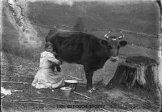 I would get a dairy cow, name her Daisy, and milk her twice a day. Morning and night.