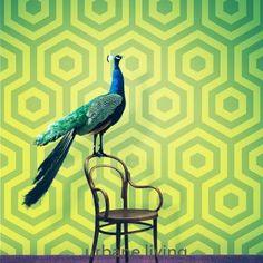 Wallpaper Hexagono (Hit-1961-1)